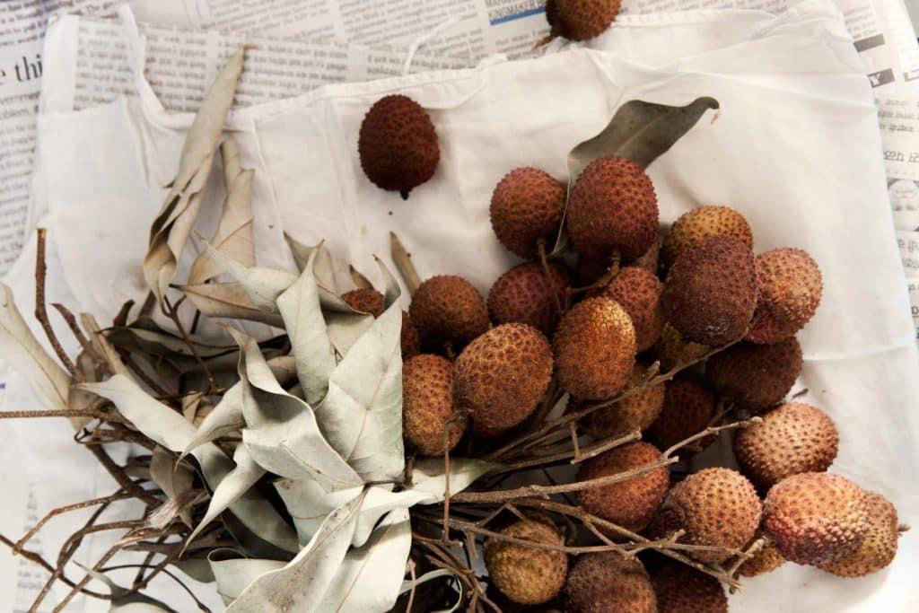 Frutas de Natal - Lichias
